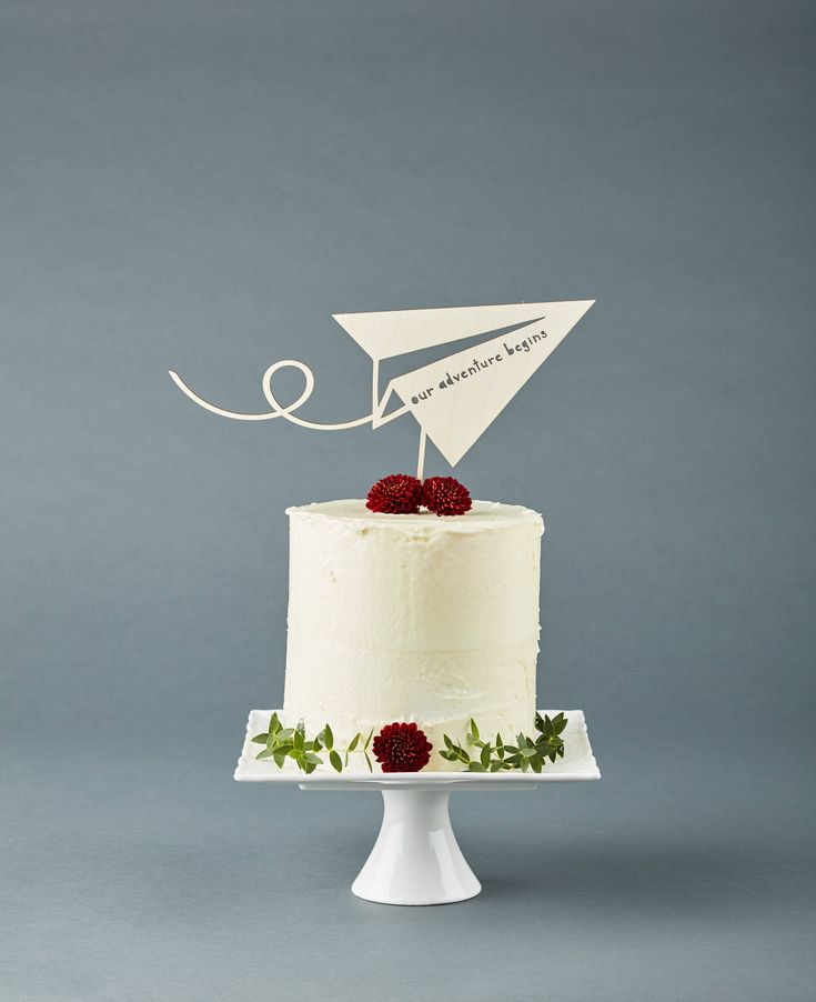 Airplane Adventure Cake Topper