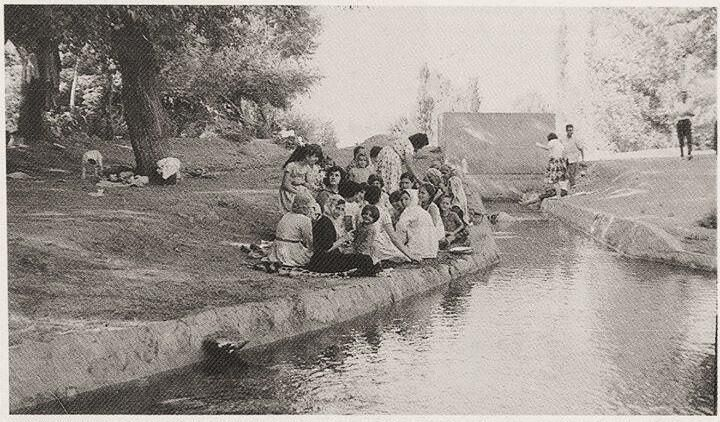 Malatya - Horata Suyu kenarında piknik, 1963