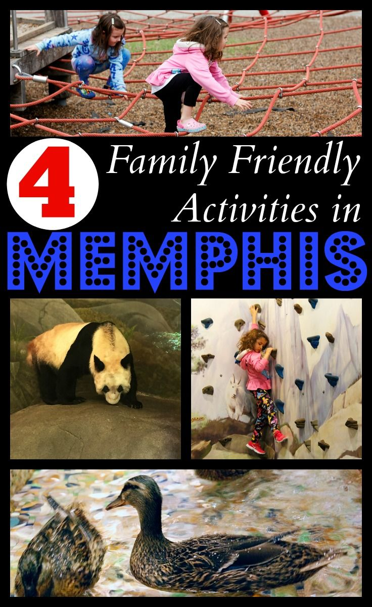 Memphis, Tennesse has a lot of great activities for families. From the Memphis Zoo to the Peabody Hotel, here are 4 Family Friendly Activities in Memphis.