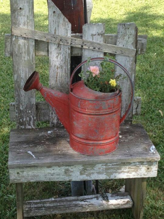 Old Watering Can...on a rustic bench. his.  Would like to build a full size bench like this.