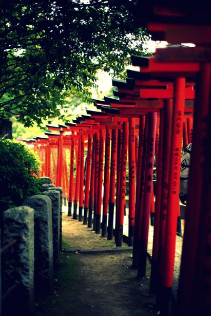 Nezu shrine, Japan 根津神社