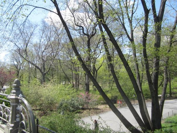 NYC spring 13 009