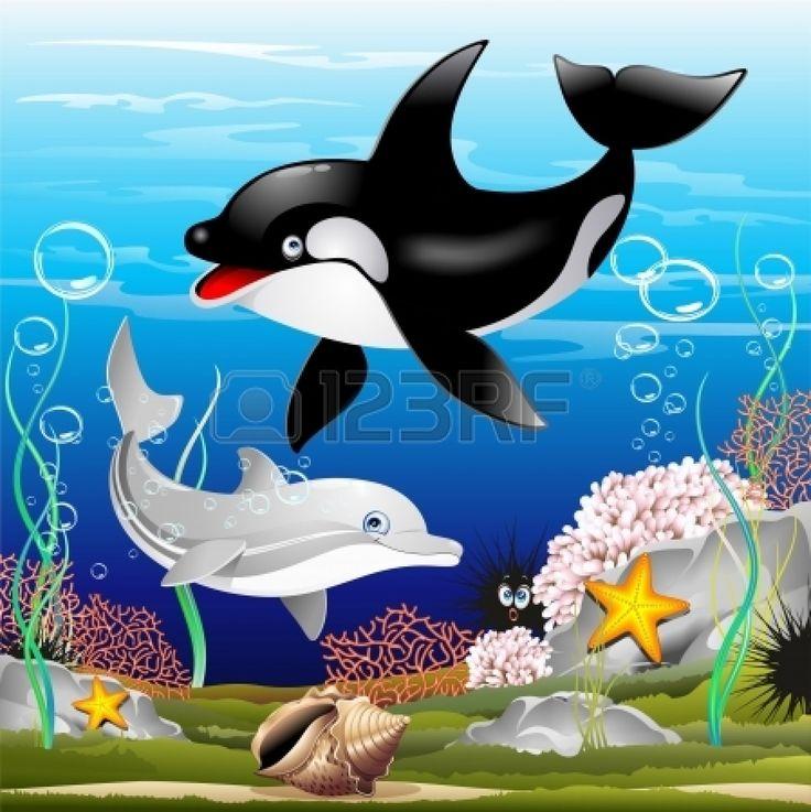 Dolfijnen En Orka Beeldverhaal Over De Oceaan Royalty Vrije Cliparts, Vectoren, En Stock Illustratie. Pic 20282320.