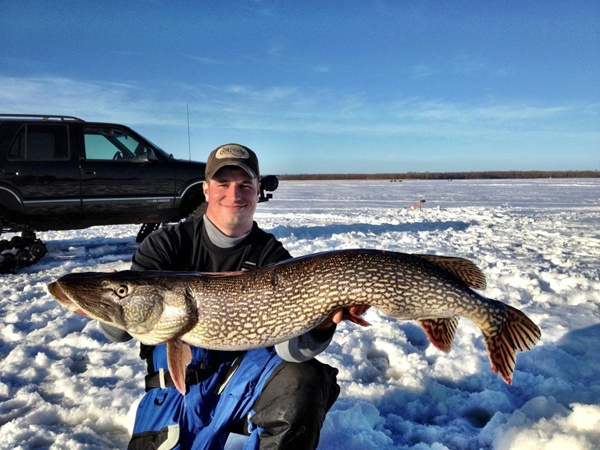 17 best images about big fish photos on pinterest pike for Big fish lake