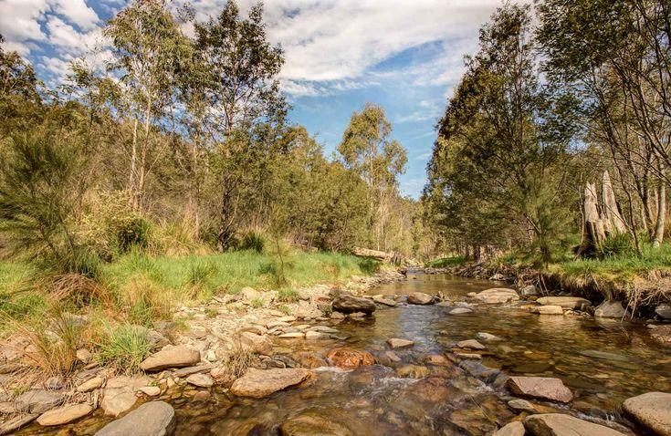 Flea Creek campground, Brindabella National Park. Photo: Murray van der Veer/NSW Government