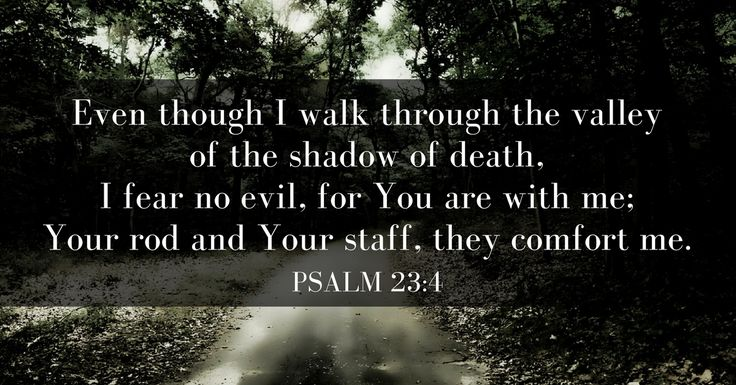 Psalm 23:4 is a Bible verse from one of the most famous Psalms, where David is voicing his understanding of God's nearness and compassion even through times of deep sorrow and death. Study this verse and Bible Commentary to know the comfort, strength and peace of His Presence.