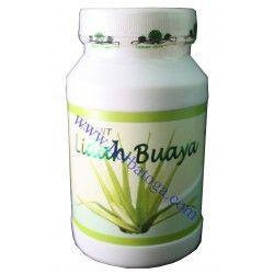 Menjual Herbal Lidah Buaya :  Membantu mengatasi susah buang air besar, panas dalam jerawat wasir, menurunkan tekanan darah dan menghaluskan kulit.  http://herbatoga.com/home/20-herbal-instan-lidah-buaya.html