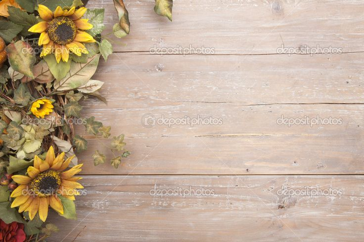 Fall border with sunflowers on a grunge wood background ...