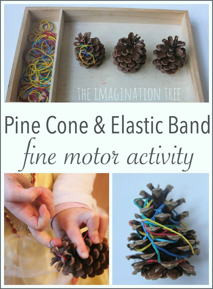 Fine motor skills activity for preschoolers using elastic bands and pine cones!