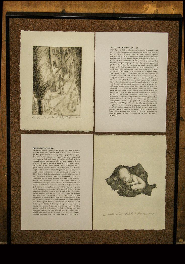 carte bibliofila 2.pagini de carte expuse