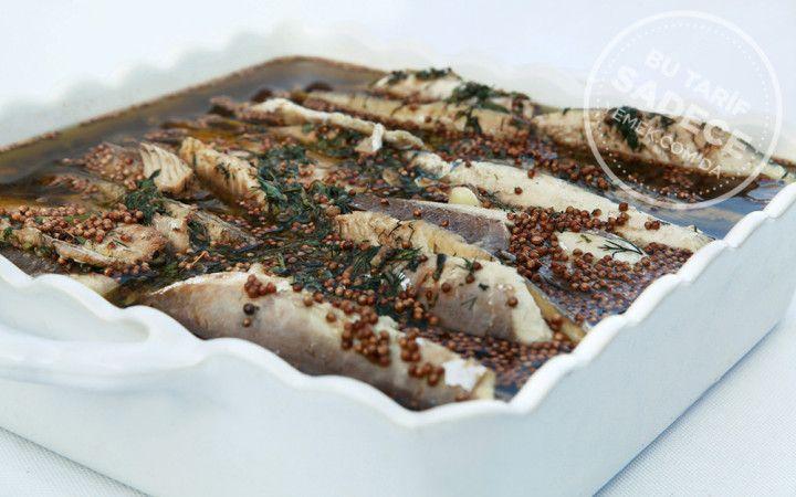 Chef Mezze'den Balsamik Soslu, Kişnişli Uskumru Marin Tarifi