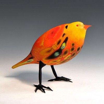 Orange-Backed Yellow Finch - Shane Fero