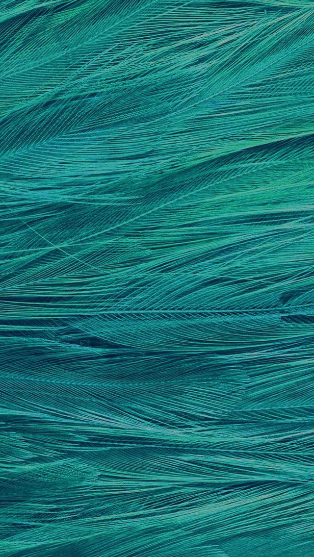Feather Blue Bird Pattern #iPhone #5s #wallpaper
