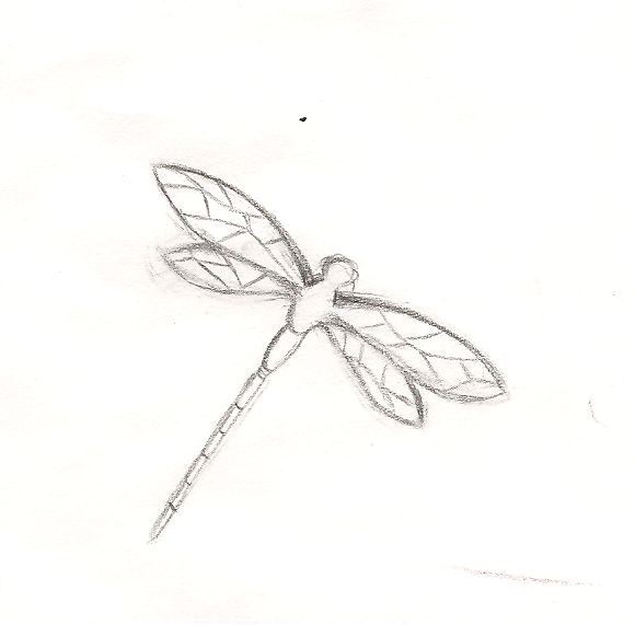 Dragonfly outline drawing dragonfly outline by