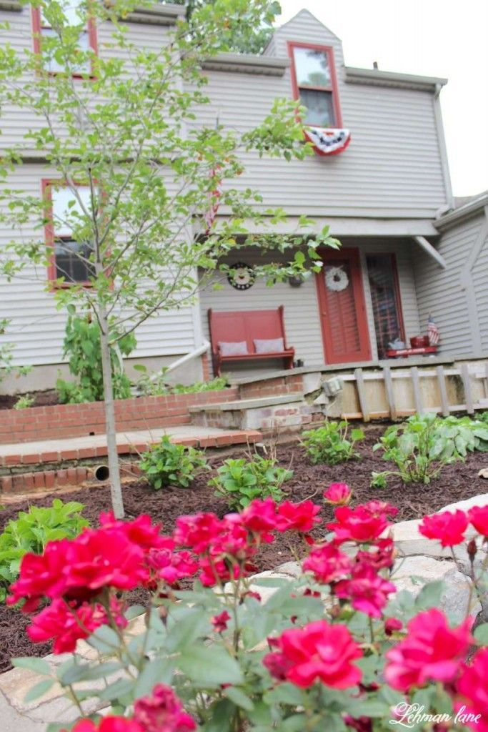 Curb appeal hop week 2 - landscaping the front