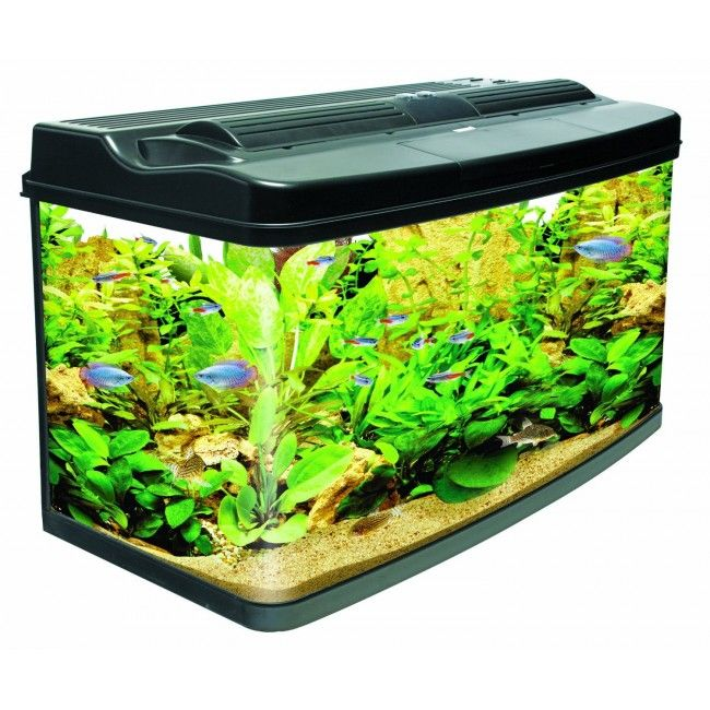 Interpet Fish Pod 120 Aquarium