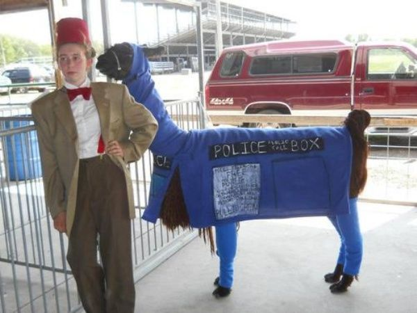 This makes me smile. Llamatardis. The Strangest Doctor Who Cosplay Ever.