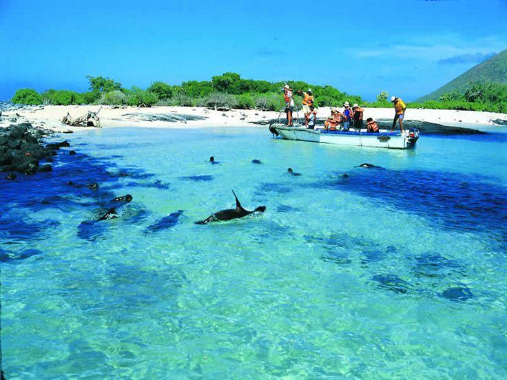 Hotels In Galapagos Islands Ecuador Oceanfront