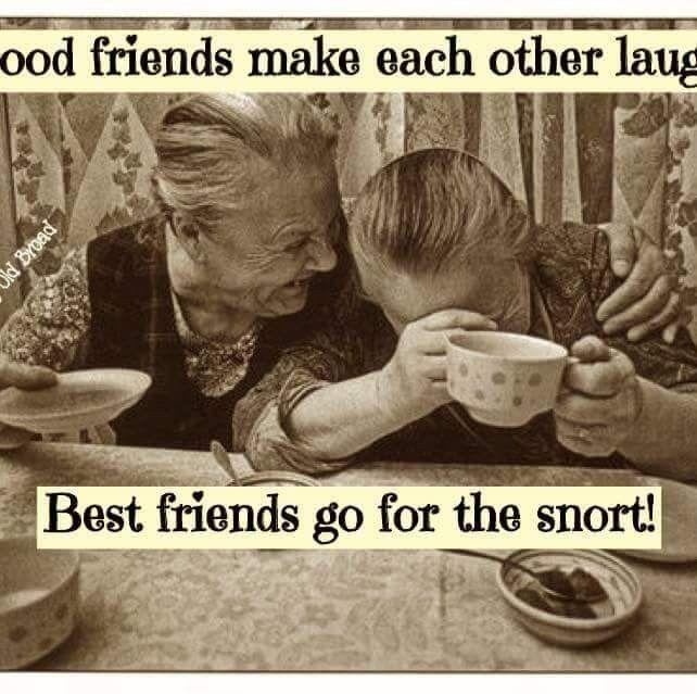 Pin By My Info On Friends Friendship Friends Quotes Funny Friends Funny Friends Quotes