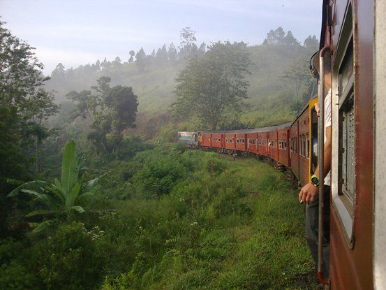 Solo Travel in Sri Lanka: Across the Country in 10 Days