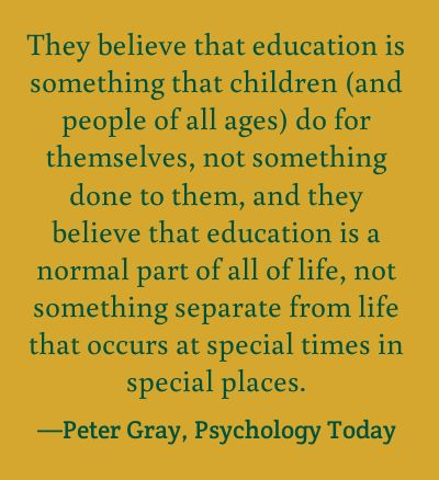 The perspective of unschooling parents