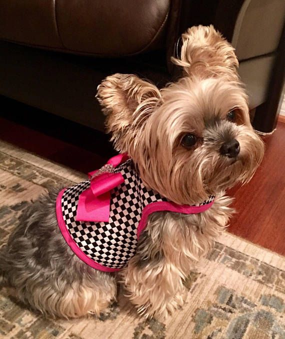 Rhinestone Trim Check N Pink Small Dog Harness With Bow Made In
