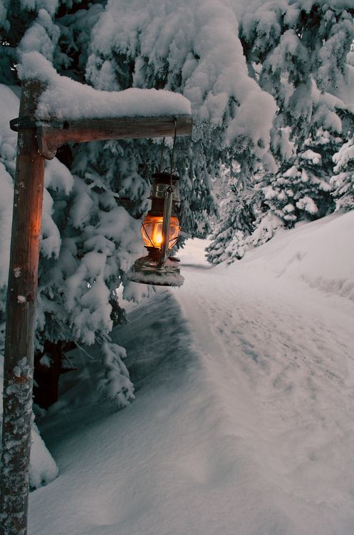 "Winter at the cabin. Trees are beautiful and so is the snow.   ""We'll hang the light out for You!"":"