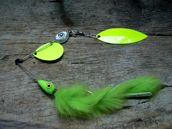 21 best fishing line images on pinterest fishing line for Bass pro fishing line