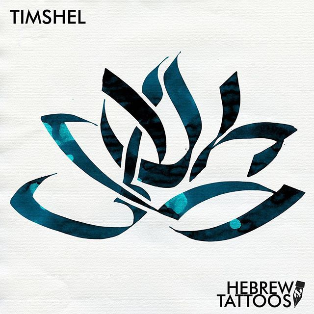 Jess wrote: I would like a tattoo desig for Timshel from Genesis 4:7 as referenced in East of Eden. This book was gifted to me during a dark time and this passage and interpretation in the story gave me the hope that I could overcome; that maybe I wasn't fated to walk the same steps as my mother.  #hebrew #hebrewtattoo #hebrew_tattoos #hebrewcalligraphy #tattoo #calligraphy  #art #calligraphytattoo  #tattoostories #lettering #letteringtattoo #bible #bibletattoo #jewishart #jewishlife…