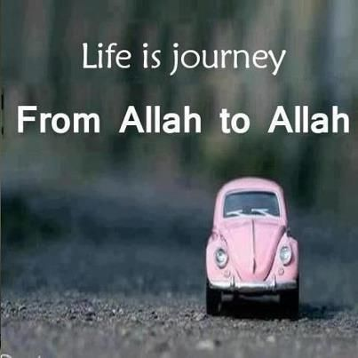 Life is a journey from Allah (swt) to Allah (swt). http://www.bookumrah.ca/