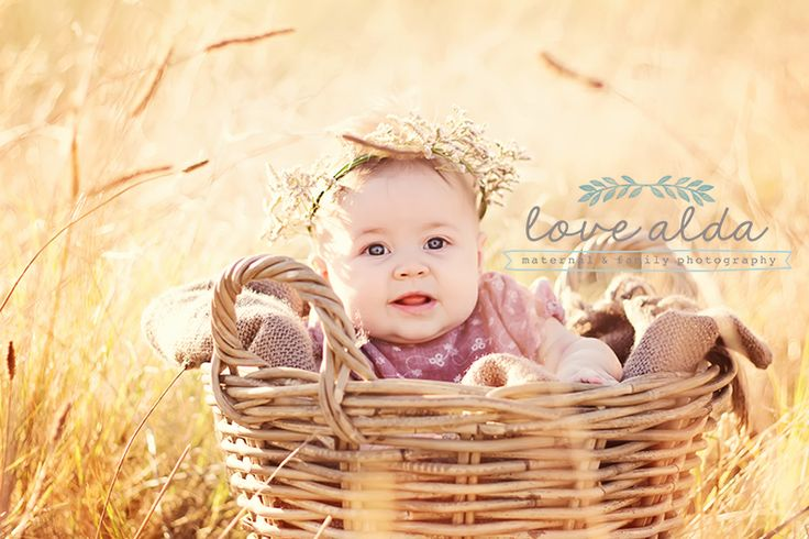 Children Kids Photography Baby in Basket Golden Hour www.lovealda.com