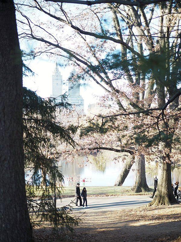 Avec Sofié blog l Walk in the Central Park