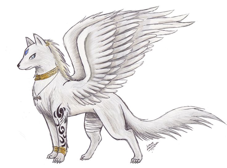 wolf with wings | Awesome Drawings Of Wolves With Wings Hyrulara wolf form by