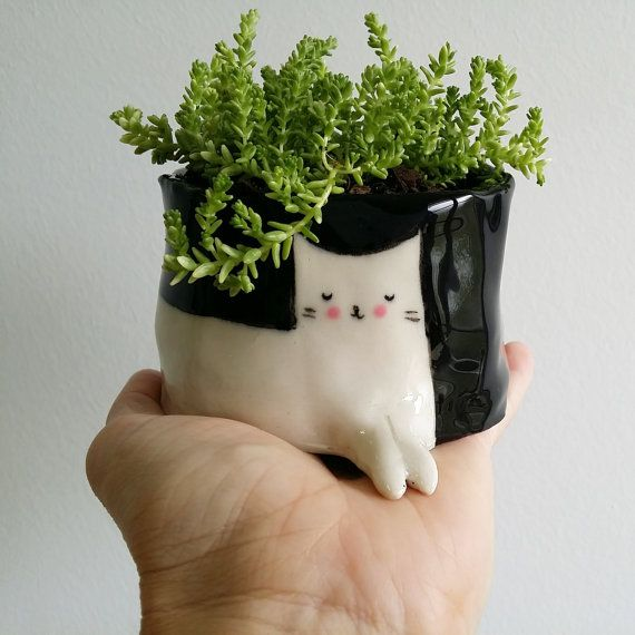 the cutest little planter