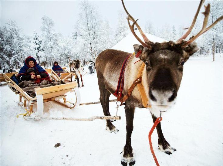 Laponia finlandesa ·