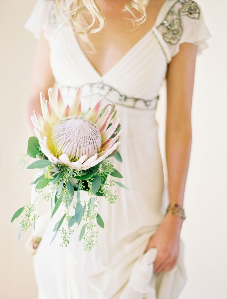 one of my favorite bouquet images of all time. protea + seeded euc photographed by Jose Villa via eleGALA.com