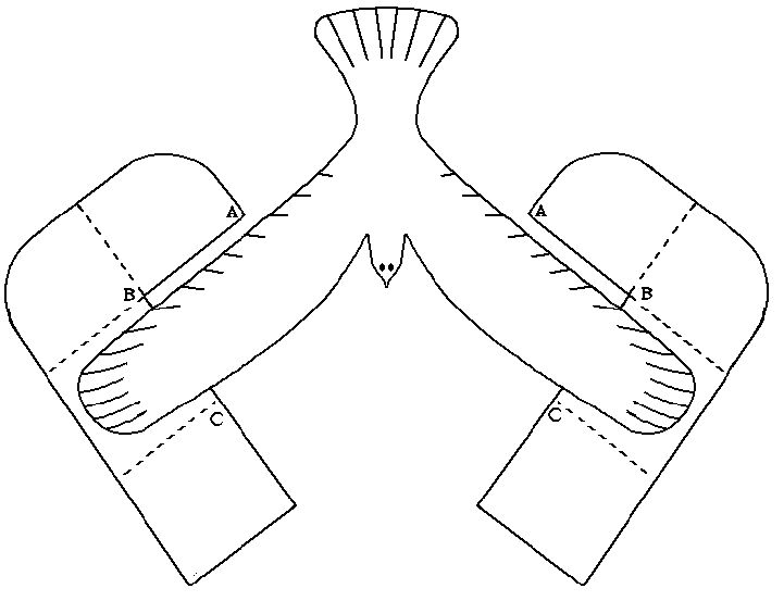 balance bird template For use in WEBELOS Scientist Pin Handbook Page 423 This one works without taping a coin to each wing! :)
