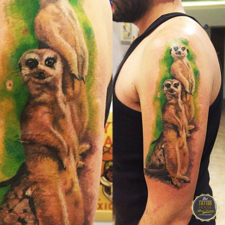 Realistic Tattoo By Melek Taştekin. #tattoo #tattooer