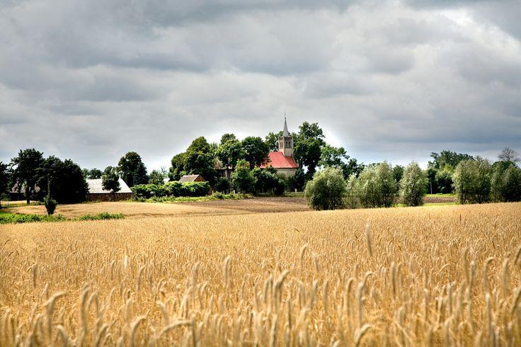 Kościół pod wezwaniem św. Andrzeja Ap w Tokarach Pierwszych. Gmina Kawęczyn. Swojskie Klimaty.