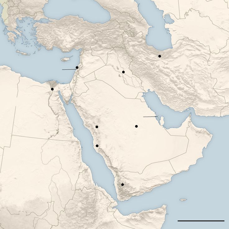 Saudi-Arabia and Iran: The history of the two nations' rivalry, including the Sunni-Shiite sectarianism both sides have cultivated, points to a future of civil wars, scholars warn.
