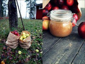 Äppelmos med vanilj, kanel och kardemumma
