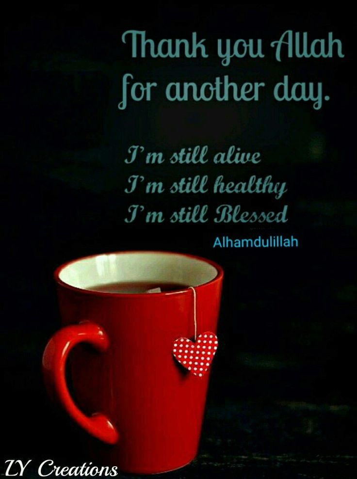 Thank you Allah for another day ...