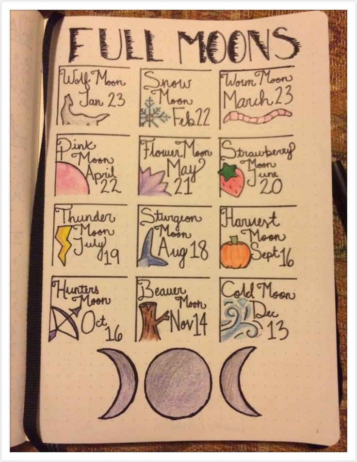 My witchy bullet journal