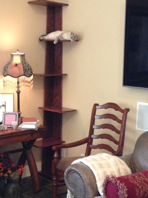 "Modern Corner Climbing Cat Tower, 68"" tall cat stand, carpeted platforms, modern style cat tree and cat retreat."