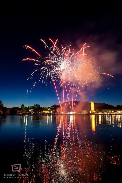 Marin County Fair Fireworks 2010 by Forrest Tanaka, via Flickr