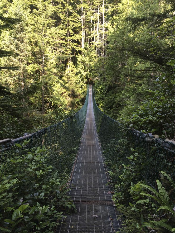 Loss Creek Suspension Bridge - hiking the JDF Trail on Vancouver Island.  New blog post coming soon!