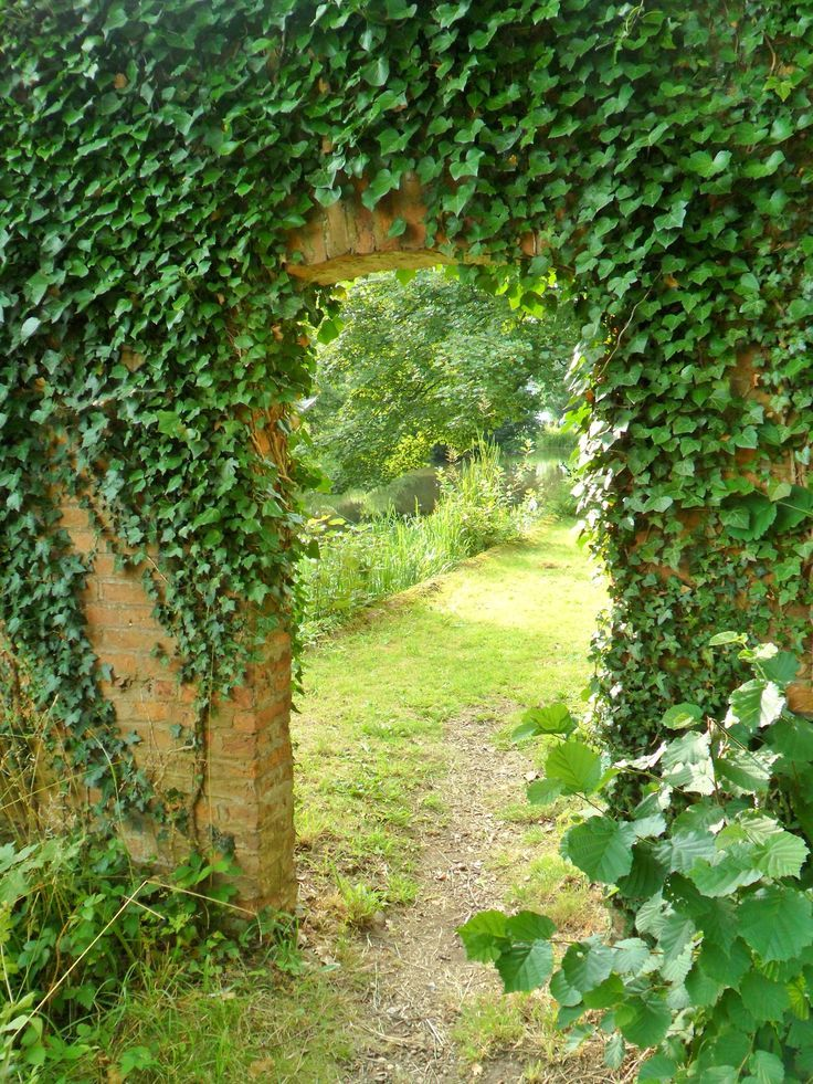 Ivy covered archway to walled garden, Middleton Hall, Warwickshire, England