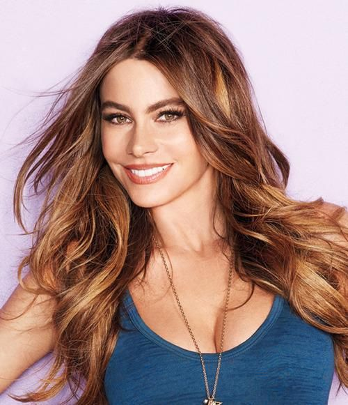 dye hair dark brown to cover grays.  dye- honey blonde for brunettes loreal to sections- highlights
