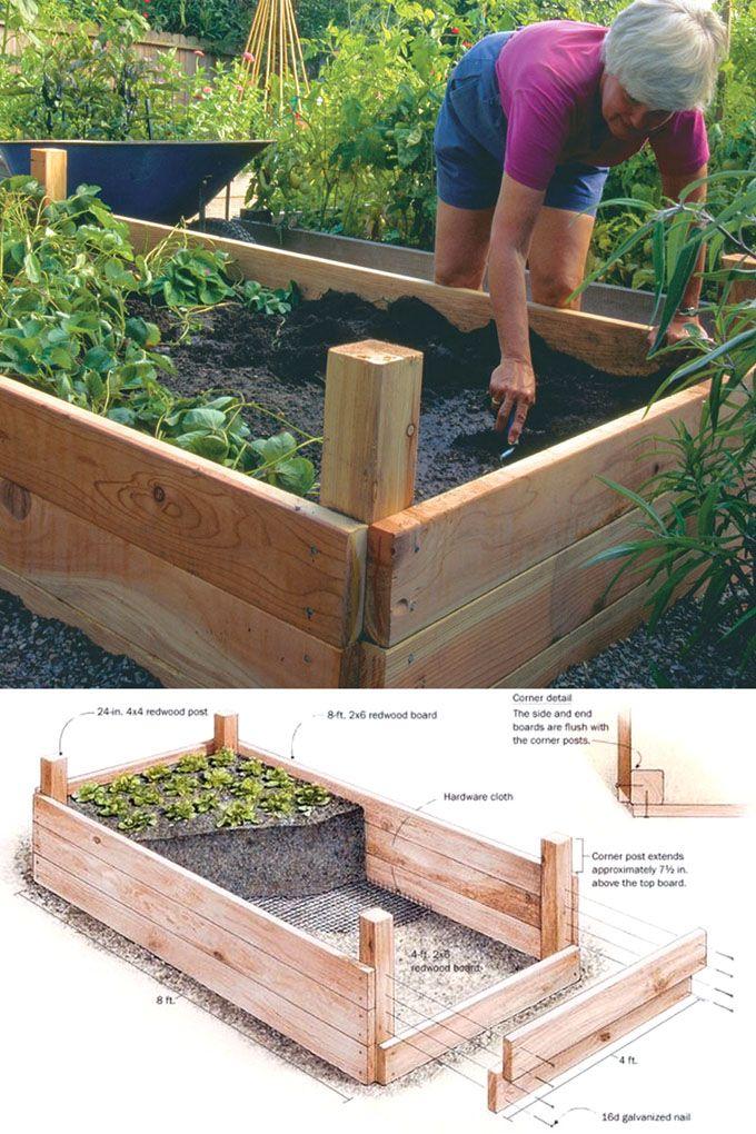 28 Amazing DIY Raised Bed Gardens Hometalk Summer