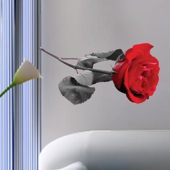 Τριαντάφυλο Φωτορεαλιστικό, αυτοκόλλητο τοίχου ,12,20 €,https://www.stickit.gr/index.php?id_product=858&controller=product
